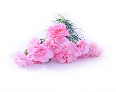 آموزش ساخت گل با کاغذ رنگی