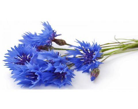 آموزش ساخت گل با جوراب بازیافتی